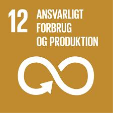 FN's verdensmål nr. 12