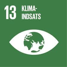 FN's verdensmål nr. 13